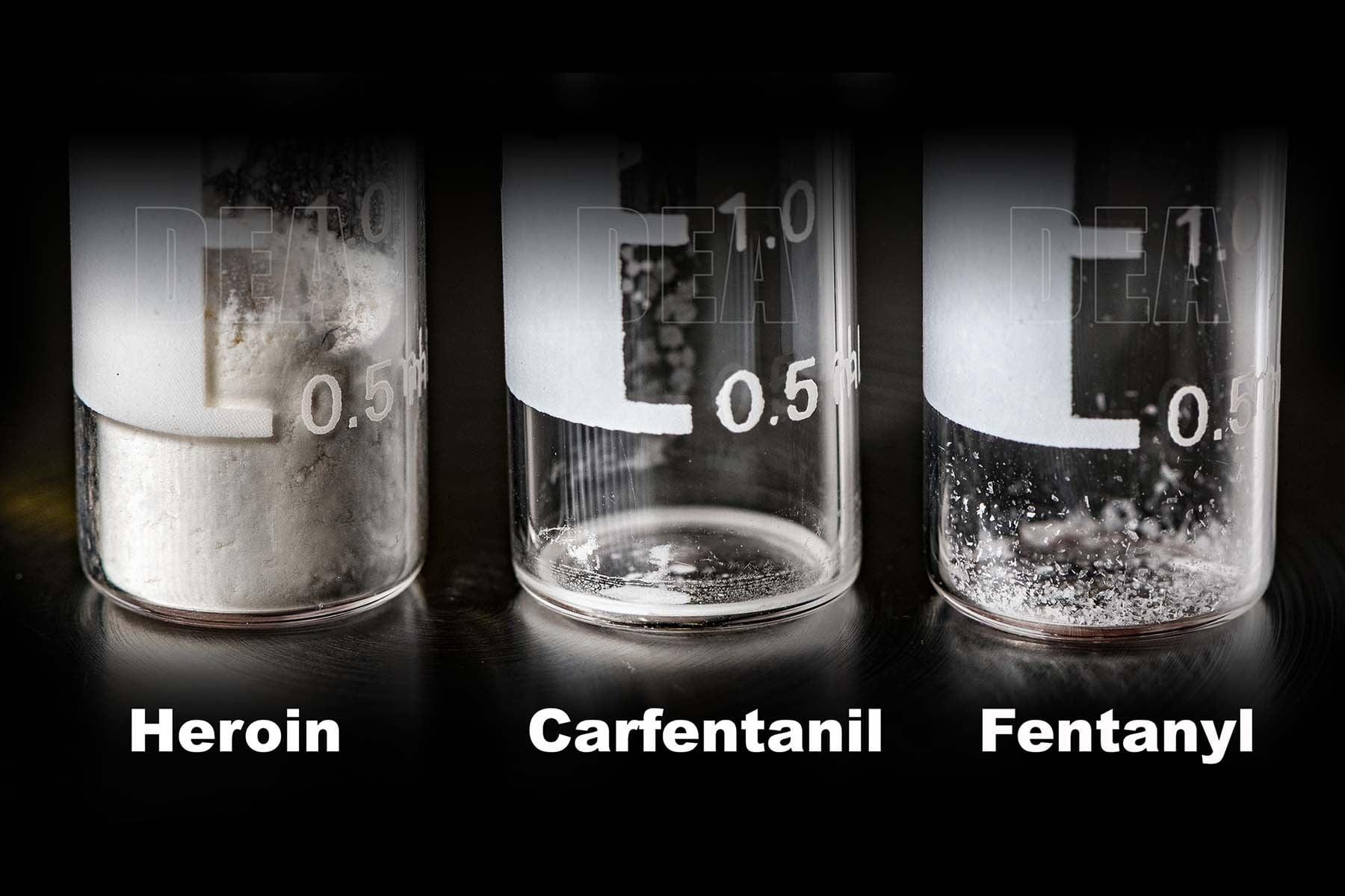 heroin carfentanil fentanyl